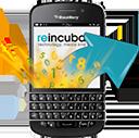 BlackBerry Backup Extractor logo